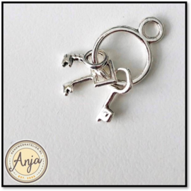 Sleutelring met sleutels