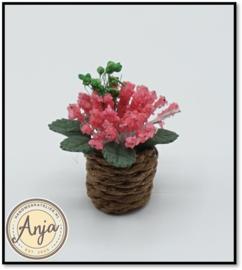 Plant roze in pot D1278R