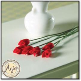 4497 Tulpen per zes, rood