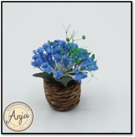 Plant blauw in pot D1278B