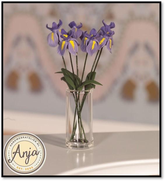 4950 Iris per zes