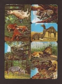Kruger 99/27 Wilde dieren poezieplaatjes