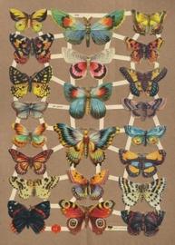 Dagpauwoog met andere vlinders poezieplaatjes 7426