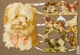 Grote met kleine honden poëzieplaatjes GL7070