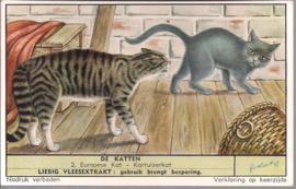 Liebig: De Katten - Europese kat - Kartuizerkat