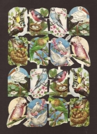 Kruger 98/121 Vogels klein poezieplaatjes