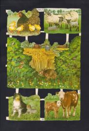 Allerlei dierens met jongen poezieplaatjes MLP 1708