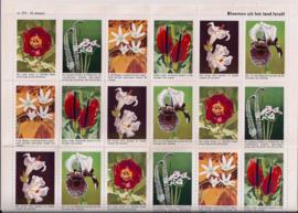 Vel met 42 beloningplaatjes - Bloemen uit Israel