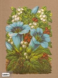 Blauwe bloemen poezieplaatjes 5060