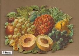 Fruit met Ananas poezieplaatjes 5061