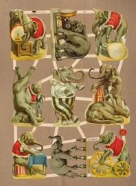 Olifanten Circus poezieplaatjes 7428
