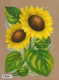 Zonnebloemen poezieplaatjes 5105