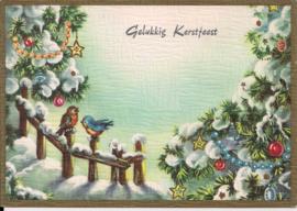 Gelukkig Kerstfeest - vogels in de sneeuw [14236]