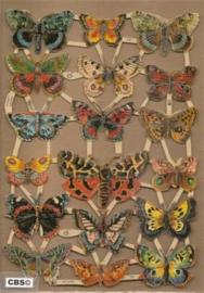 Vlinders poezieplaatjes GL7221
