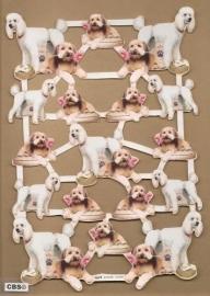 Poedel en hond met bloem met goud poezieplaatjes 571016