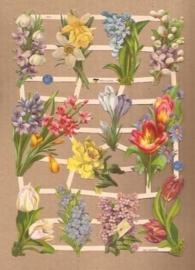 Tere voorjaarsbloemetjes poezieplaatjes 7413