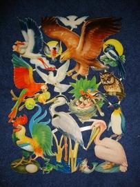 E.O. & Co 4709 Vogels poezieplaatjes