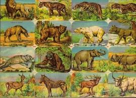 Editions Chagor Liege No 31939 - Plaat IV Wilde dieren