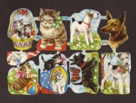 Kruger 98/04 Honden en Katten poezieplaatjes