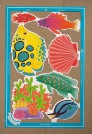 C5023: Kleurige vissen poezieplaatjes