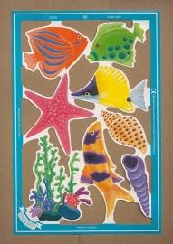 C5024: Kleurige vissen  met zeester poezieplaatjes