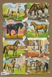 Allemaal paarden poezieplaatjes MLP 1531
