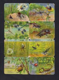 Insecten L & B 33246