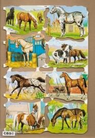 Allemaal paarden poezieplaatjes MLP 1532