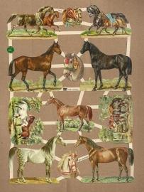 Paarden poezieplaatjes 7404