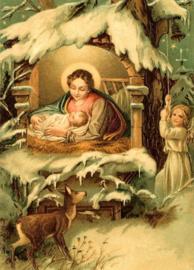 In de Kerststal Reliefkaart EF 3070