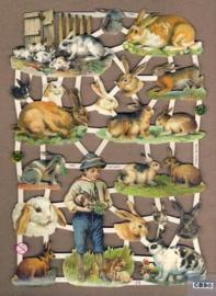 Jongetje met konijnen Poëzieplaatjes 7292
