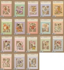 *Poezieplaatjes 18 Bloemenkindertjes Cicely Mary Barker