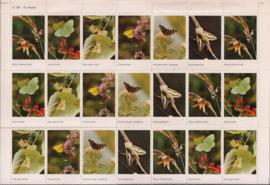 Vel met 42 beloningplaatjes - Vlinders