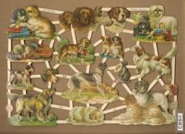 Allemaal honden poezieplaatjes GL7289