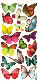 Felgekleurde vlinders poezieplaatjes Stickers C47