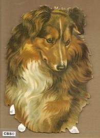 Groot Lassie hoofd poeziepaat 7207