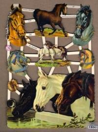 Paarden drinken water Poëzieplaatjes 7248