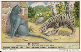 Liebig: De Katten - Blauwgrijze kat - Kat van het eiland Man