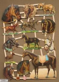 Paardenhoofden poëzieplaatjes 7302