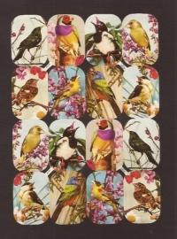 Kruger 98/149 Zangvogel poezieplaatjes