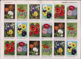 Vel met 42 beloningplaatjes - Bloemen uit Nederland