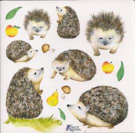 Egels poezieplaatjes Stickers K54