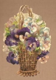 Mand met paarse viooltjes poezieplaatjes 5135