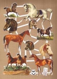 Paarden Deense poezieplaatjes D16