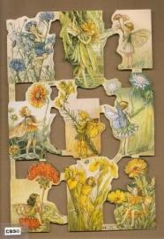 Bloemenkindertjes Cicely Mary Barker poezieplaatjes 1959