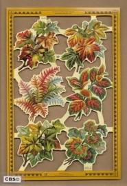 Decoratieve Herfstbladeren poezieplaatjes A 152