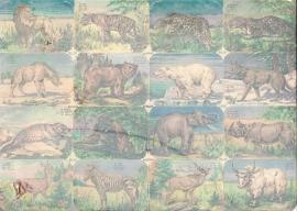 Editions Chagor Liege No 21969 - Plaat IV Wilde dieren