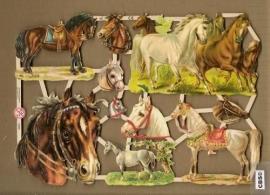 Paarden poezieplaatjes 7236