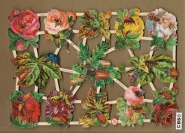 Bloemen met verschillende insecten poezieplaatjes 7338