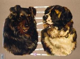 Hondenkopppen Poëzieplaatjes 7275